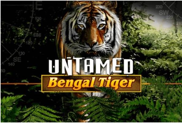 Indomável - Tigre de Bengala